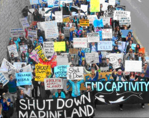 MAD protesters demand Marineland closure